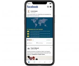 Sponsorizzata Facebook